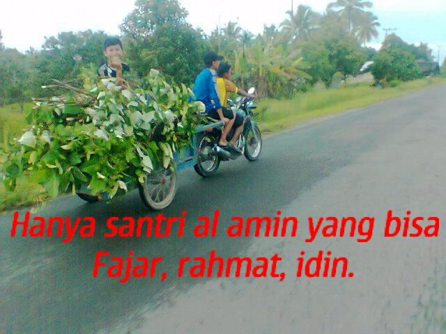 foto0229_001